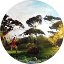 Erica Lambertson – Artist Page